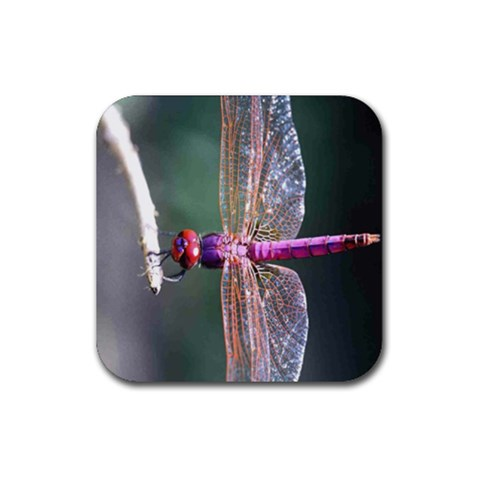 Dragonfly Coaster By Birkie   Rubber Coaster (square)   Drpw1uo2ivu9   Www Artscow Com Front