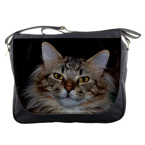 Messenger Bag   Gizmo The Cat By Jenessa   Messenger Bag   Hnyss348tl6p   Www Artscow Com Front