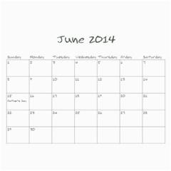 2013 Sam Fisher 18 Month Calendar By Alina Waring   Wall Calendar 11  X 8 5  (18 Months)   Mufvge9418bg   Www Artscow Com Jun 2014