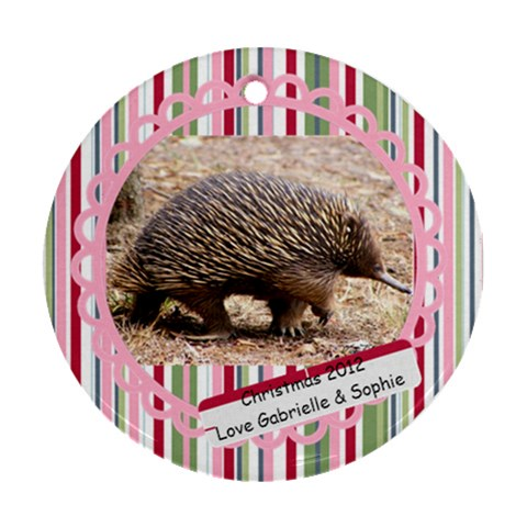 Echidna By Gabrielle Grant   Ornament (round)   Qf8zi6ri7pdb   Www Artscow Com Front