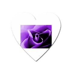 Purple Rose Large Sticker Magnet (heart) by PurpleVIP