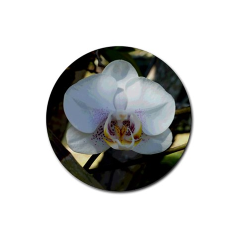 White Orchid Love 1 By Susanne Alexander   Rubber Coaster (round)   Bheb5y0kouwk   Www Artscow Com Front