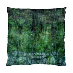 Green Mystery By Monasol Earthlink Net   Standard Cushion Case (two Sides)   0ktqqx5fyybw   Www Artscow Com Front