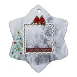 Tis The Season Ornament - Ornament (Snowflake)