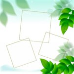 Spring Leaf Theme  kits