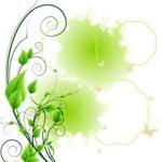 Green Nature kits