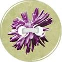 BOS button02