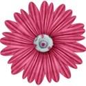 BOS BG flower07