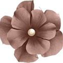 moo_cherished_flower4