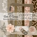 BitsO Scrap-Colors of January