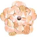 jeanine-blossom6-ajs