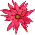 cc-DSDITuttiFruity-Flower01