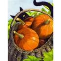 harvest-catherine-g-mcelroy