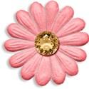 Pamperedprincess_cora_flower1 copy