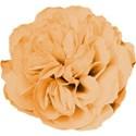 Redhead Scraps - flower