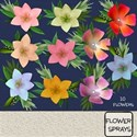 Flower Sprays