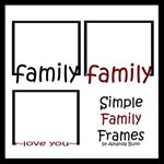 Simple Family Frames