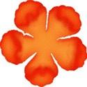 flowerdkorange