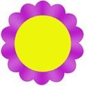 flowerFusha2