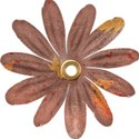 brown flower 4