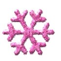 jennyL_snow_snowflake13a