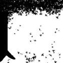 fall_tree2