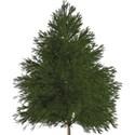 moo_holidaymagic_christmastree