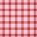 jss_joy_paper plaid 2