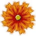 BOS EF flower02
