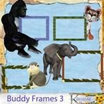 Buddy Frames 3