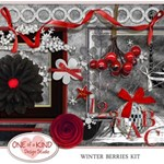 Winter Berries Kit