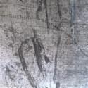 background (221)