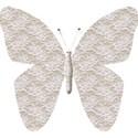 LaceButterfly