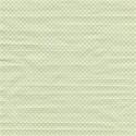 paperpolka4