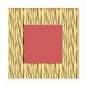 square  zebra frame