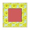 square sunny frame