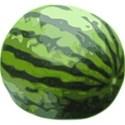 0 watermelon