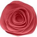 rolledflowerpink