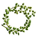 greenery circle