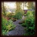 garden picture background