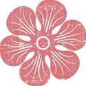 MLIVA_eggster-flower3