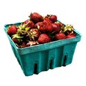 bucketstrawberries1