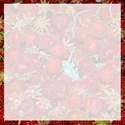 strawberrypaper3