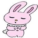 rabbit stuffed pink
