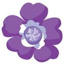flowerpurple