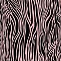 PP15-zebra_mikki