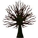 tree short13