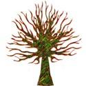 tree short14