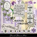 Friends Forever Kit Cover 1