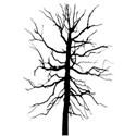 tree overlay